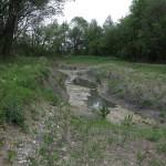 Gewässerrevitalisierung