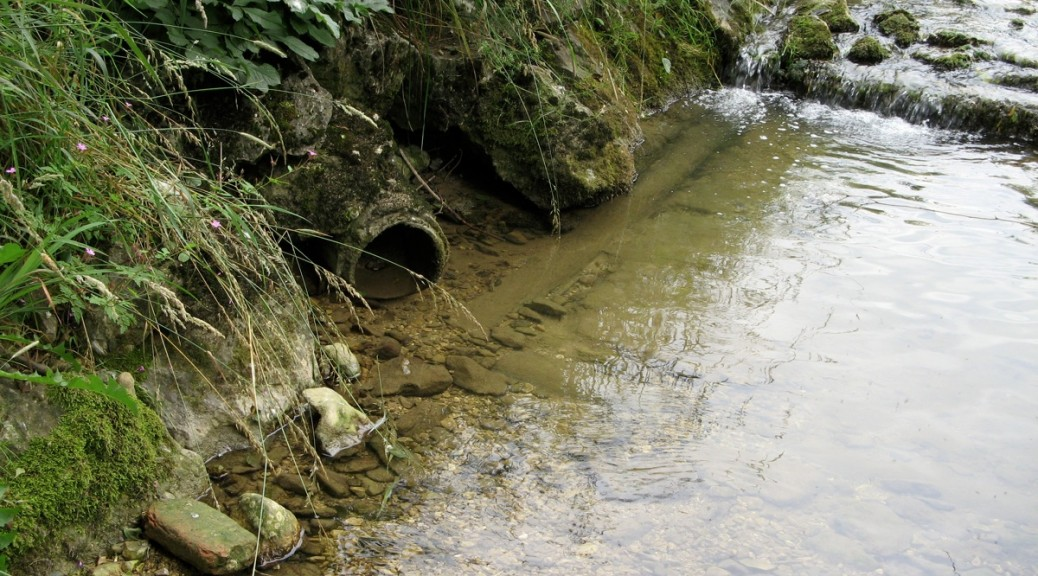 Zustandsbericht Gewässer